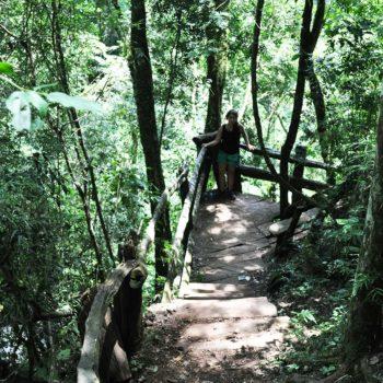 Excursiones de Puro Moconá Lodge